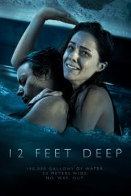 ดูหนังออนไลน์ฟรี 12 Feet Deep (2017) 12 ฟุตดิ่งลึกสระนรก หนังเต็มเรื่อง หนังมาสเตอร์ ดูหนังHD ดูหนังออนไลน์ ดูหนังใหม่