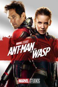 ดูหนังออนไลน์ฟรี Ant man and the wasp (2019) แอนท์ แมน และ เดอะ วอสพ์ หนังเต็มเรื่อง หนังมาสเตอร์ ดูหนังHD ดูหนังออนไลน์ ดูหนังใหม่