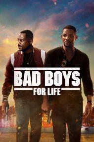 ดูหนังออนไลน์ฟรี Bad Boys for Life (2020) คู่หูขวางนรก ตลอดกาล หนังเต็มเรื่อง หนังมาสเตอร์ ดูหนังHD ดูหนังออนไลน์ ดูหนังใหม่