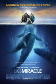 ดูหนังออนไลน์ฟรี Big Miracle (2012) ปาฏิหาริย์วาฬสีเทา หนังเต็มเรื่อง หนังมาสเตอร์ ดูหนังHD ดูหนังออนไลน์ ดูหนังใหม่
