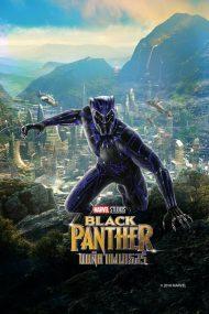 ดูหนังออนไลน์ฟรี Black Panther (2018) แบล็ค แพนเธอร์ หนังเต็มเรื่อง หนังมาสเตอร์ ดูหนังHD ดูหนังออนไลน์ ดูหนังใหม่