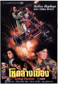 ดูหนังออนไลน์ฟรี Lethal Panther (1990) โหดล้างเมือง หนังเต็มเรื่อง หนังมาสเตอร์ ดูหนังHD ดูหนังออนไลน์ ดูหนังใหม่