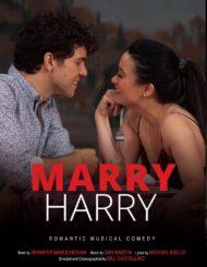 ดูหนังออนไลน์ฟรี Marry Harry (2020) หนังเต็มเรื่อง หนังมาสเตอร์ ดูหนังHD ดูหนังออนไลน์ ดูหนังใหม่