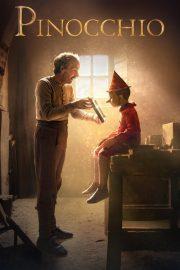 ดูหนังออนไลน์ฟรี Pinocchio (2019) พินอคคิโอ หนังเต็มเรื่อง หนังมาสเตอร์ ดูหนังHD ดูหนังออนไลน์ ดูหนังใหม่