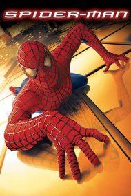 ดูหนังออนไลน์ฟรี Spider Man 1 (2002) ไอ้แมงมุม หนังเต็มเรื่อง หนังมาสเตอร์ ดูหนังHD ดูหนังออนไลน์ ดูหนังใหม่