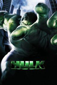 ดูหนังออนไลน์ฟรี The Hulk (2003) มนุษย์ยักษ์จอมพลัง หนังเต็มเรื่อง หนังมาสเตอร์ ดูหนังHD ดูหนังออนไลน์ ดูหนังใหม่