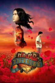 ดูหนังออนไลน์ฟรี Ghost of Valentine (2006) กระสือวาเลนไทน์ หนังเต็มเรื่อง หนังมาสเตอร์ ดูหนังHD ดูหนังออนไลน์ ดูหนังใหม่
