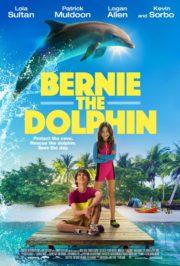 ดูหนังออนไลน์ฟรี Bernie the Dolphin 2 (2019) เบอร์นี่ โลมาน้อย หัวใจมหาสมุทร 2 หนังเต็มเรื่อง หนังมาสเตอร์ ดูหนังHD ดูหนังออนไลน์ ดูหนังใหม่