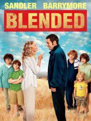 ดูหนังออนไลน์ฟรี Blended (2014) ทริปอลวน รักอลเวง หนังเต็มเรื่อง หนังมาสเตอร์ ดูหนังHD ดูหนังออนไลน์ ดูหนังใหม่