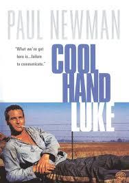 ดูหนังออนไลน์ฟรี Cool Hand Luke (1967) คนสู้คน หนังเต็มเรื่อง หนังมาสเตอร์ ดูหนังHD ดูหนังออนไลน์ ดูหนังใหม่