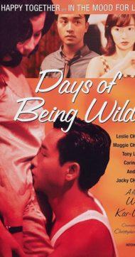 ดูหนังออนไลน์ฟรี Days Of Being Wild (1990) วันที่หัวใจรักกล้าตัดขอบฟ้า หนังเต็มเรื่อง หนังมาสเตอร์ ดูหนังHD ดูหนังออนไลน์ ดูหนังใหม่