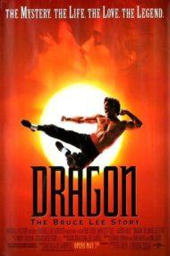 ดูหนังออนไลน์ฟรี Dragon The Bruce Lee Story (1993) เรื่องราวชีวิตจริงของ บรู๊ซ ลี หนังเต็มเรื่อง หนังมาสเตอร์ ดูหนังHD ดูหนังออนไลน์ ดูหนังใหม่