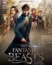 ดูหนังออนไลน์ฟรี Fantastic Beasts and Where to Find Them (2016) สัตว์มหัศจรรย์และถิ่นที่อยู่ หนังเต็มเรื่อง หนังมาสเตอร์ ดูหนังHD ดูหนังออนไลน์ ดูหนังใหม่