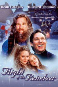 ดูหนังออนไลน์ฟรี Flight of the Reindeer (2000) ผจญภัยเมืองมหัศจรรย์ หนังเต็มเรื่อง หนังมาสเตอร์ ดูหนังHD ดูหนังออนไลน์ ดูหนังใหม่