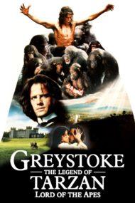 ดูหนังออนไลน์ฟรี Greystoke The Legend of Tarzan Lord of the Apes (1984) เกรย์สโตก ทาร์ซาน หนังเต็มเรื่อง หนังมาสเตอร์ ดูหนังHD ดูหนังออนไลน์ ดูหนังใหม่