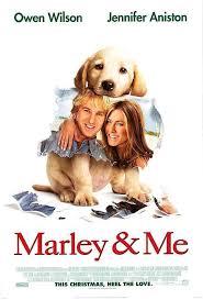 ดูหนังออนไลน์ฟรี Marley & Me (2008) จอมป่วนหน้าซื่อ หนังเต็มเรื่อง หนังมาสเตอร์ ดูหนังHD ดูหนังออนไลน์ ดูหนังใหม่