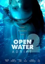 ดูหนังออนไลน์ฟรี Open Water 2 Adrift (2006) วิกฤตหนีตายลึกเฉียดนรก หนังเต็มเรื่อง หนังมาสเตอร์ ดูหนังHD ดูหนังออนไลน์ ดูหนังใหม่