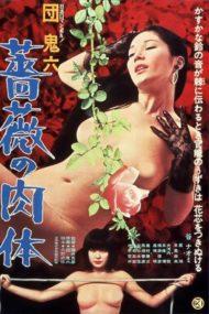 ดูหนังออนไลน์ฟรี Skin of Roses (1978) หนังผู้ใหญ่ญี่ปุ่นในตำนาน หนังเต็มเรื่อง หนังมาสเตอร์ ดูหนังHD ดูหนังออนไลน์ ดูหนังใหม่