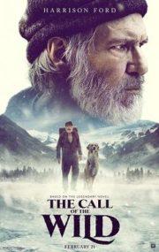 ดูหนังออนไลน์ฟรี The Call of the Wild (2020) เสียงเพรียกจากพงไพร หนังเต็มเรื่อง หนังมาสเตอร์ ดูหนังHD ดูหนังออนไลน์ ดูหนังใหม่
