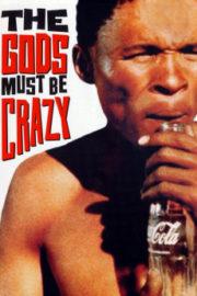 ดูหนังออนไลน์ฟรี The Gods Must Be Crazy (1980) เทวดาท่าจะบ๊องส์ หนังเต็มเรื่อง หนังมาสเตอร์ ดูหนังHD ดูหนังออนไลน์ ดูหนังใหม่