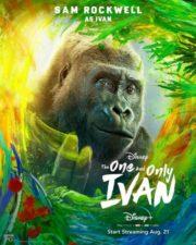 ดูหนังออนไลน์HD The One and Only Ivan (2020) หนังเต็มเรื่อง หนังมาสเตอร์ ดูหนังHD ดูหนังออนไลน์ ดูหนังใหม่
