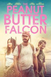 ดูหนังออนไลน์ฟรี The Peanut Butter Falcon (2019) คู่ซ่า บ้าล่าฝัน หนังเต็มเรื่อง หนังมาสเตอร์ ดูหนังHD ดูหนังออนไลน์ ดูหนังใหม่