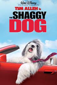ดูหนังออนไลน์ฟรี The Shaggy Dog (2006) คุณพ่อพันธุ์โฮ่ง หนังเต็มเรื่อง หนังมาสเตอร์ ดูหนังHD ดูหนังออนไลน์ ดูหนังใหม่