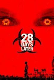 ดูหนังออนไลน์ฟรี 28 Days Later (2002) 28 วันให้หลัง เชื้อเขมือบคน หนังเต็มเรื่อง หนังมาสเตอร์ ดูหนังHD ดูหนังออนไลน์ ดูหนังใหม่