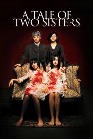 ดูหนังออนไลน์HD A Tale of Two Sisters (2003) ตู้ซ่อนผี หนังเต็มเรื่อง หนังมาสเตอร์ ดูหนังHD ดูหนังออนไลน์ ดูหนังใหม่