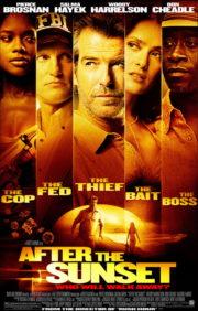 ดูหนังออนไลน์ฟรี After the Sunset (2004) พยัคฆ์โคตรเพชร หนังเต็มเรื่อง หนังมาสเตอร์ ดูหนังHD ดูหนังออนไลน์ ดูหนังใหม่