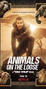 ดูหนังออนไลน์ฟรี Animals on the Loose A You vs Wild Movie (2021) ผจญภัยสุดขั้วกับแบร์ กริลส์ เดอะ มูฟวี่ หนังเต็มเรื่อง หนังมาสเตอร์ ดูหนังHD ดูหนังออนไลน์ ดูหนังใหม่