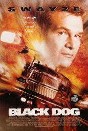 ดูหนังออนไลน์ฟรี Black Dog (1998) ไอ้หมาบ้าผ่าไฮเวย์นรก หนังเต็มเรื่อง หนังมาสเตอร์ ดูหนังHD ดูหนังออนไลน์ ดูหนังใหม่