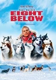 ดูหนังออนไลน์HD Eight Below (2006) ปฏิบัติการ 8 พันธุ์อึดสุดขั้วโลก หนังเต็มเรื่อง หนังมาสเตอร์ ดูหนังHD ดูหนังออนไลน์ ดูหนังใหม่