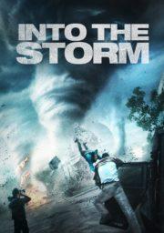 ดูหนังออนไลน์ฟรี Into The Storm (2014) อินทู เดอะ สตอร์ม โคตรพายุมหาวิบัติกินเมือง หนังเต็มเรื่อง หนังมาสเตอร์ ดูหนังHD ดูหนังออนไลน์ ดูหนังใหม่
