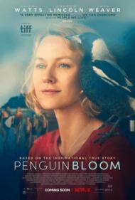 ดูหนังออนไลน์ฟรี Penguin Bloom (2021) เพนกวิน บลูม หนังเต็มเรื่อง หนังมาสเตอร์ ดูหนังHD ดูหนังออนไลน์ ดูหนังใหม่