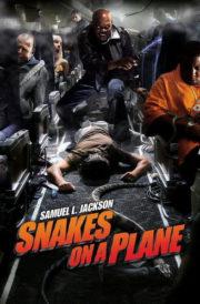 ดูหนังออนไลน์HD Snakes on a Plane (2006) เลื้อยฉก เที่ยวบินระทึก หนังเต็มเรื่อง หนังมาสเตอร์ ดูหนังHD ดูหนังออนไลน์ ดูหนังใหม่
