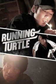 ดูหนังออนไลน์HD Running Turtle (2009) ซวยแล้วกู สู้ยิบตา หนังเต็มเรื่อง หนังมาสเตอร์ ดูหนังHD ดูหนังออนไลน์ ดูหนังใหม่