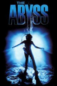 ดูหนังออนไลน์ฟรี The Abyss (1989) ดิ่งขั้วมฤตยู หนังเต็มเรื่อง หนังมาสเตอร์ ดูหนังHD ดูหนังออนไลน์ ดูหนังใหม่