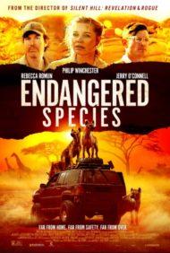 ดูหนังออนไลน์HD Endangered Species (2021) หนังเต็มเรื่อง หนังมาสเตอร์ ดูหนังHD ดูหนังออนไลน์ ดูหนังใหม่