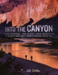 ดูหนังออนไลน์ฟรี Into the Canyon (2019) หนังเต็มเรื่อง หนังมาสเตอร์ ดูหนังHD ดูหนังออนไลน์ ดูหนังใหม่