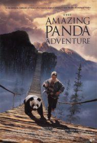ดูหนังออนไลน์HD The Amazing Panda Adventure (1995) แพนด้าน้อยผจญภัยสุดขอบฟ้า หนังเต็มเรื่อง หนังมาสเตอร์ ดูหนังHD ดูหนังออนไลน์ ดูหนังใหม่