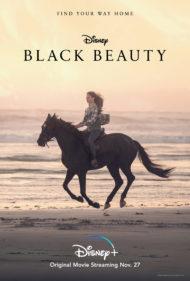 ดูหนังออนไลน์HD Black Beauty (2020) หนังเต็มเรื่อง หนังมาสเตอร์ ดูหนังHD ดูหนังออนไลน์ ดูหนังใหม่