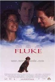 ดูหนังออนไลน์ฟรี FLUKE (1995) หนังเต็มเรื่อง หนังมาสเตอร์ ดูหนังHD ดูหนังออนไลน์ ดูหนังใหม่