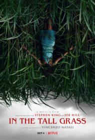 ดูหนังออนไลน์ฟรี In the Tall Grass (2019) พงหลอนมรณะ หนังเต็มเรื่อง หนังมาสเตอร์ ดูหนังHD ดูหนังออนไลน์ ดูหนังใหม่