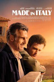 ดูหนังออนไลน์ฟรี Made in Italy (2020) เมด อิน อิตาลี หนังเต็มเรื่อง หนังมาสเตอร์ ดูหนังHD ดูหนังออนไลน์ ดูหนังใหม่