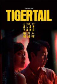 ดูหนังออนไลน์ฟรี Tigertail (2020) รอยรักแห่งวันวาน หนังเต็มเรื่อง หนังมาสเตอร์ ดูหนังHD ดูหนังออนไลน์ ดูหนังใหม่