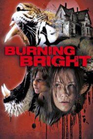 ดูหนังออนไลน์ฟรี Burning Bright (2010) ขังนรกบ้านเสือดุ หนังเต็มเรื่อง หนังมาสเตอร์ ดูหนังHD ดูหนังออนไลน์ ดูหนังใหม่