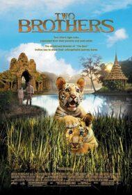 ดูหนัง Two Brothers (2004) พี่น้องสองเสือ