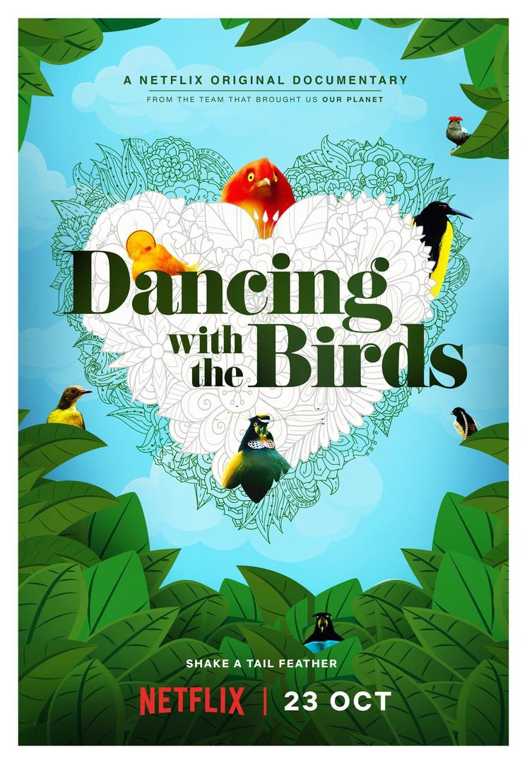 ดูหนังออนไลน์ฟรี Dancing with the Birds (2019) สารคดีนกน้อยเริงระบำรัก หนังเต็มเรื่อง หนังมาสเตอร์ ดูหนังHD ดูหนังออนไลน์ ดูหนังใหม่